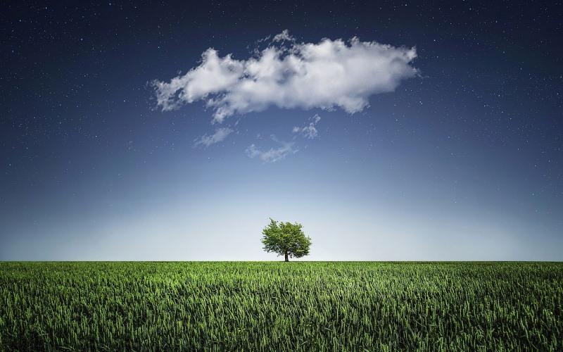 ¿Cielos despejados? Gestionando los desafíos tecnológicos de la nube
