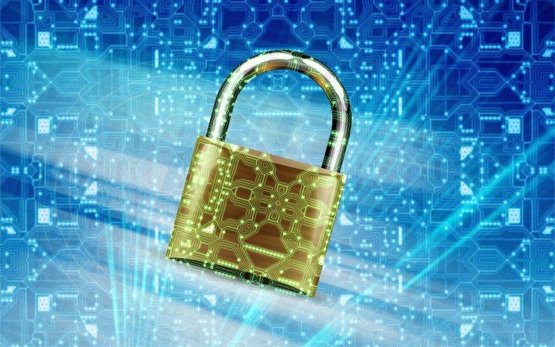 Únase al Día del Internet Seguro y sigue estos 5 consejos para no caer en manos de los hackers
